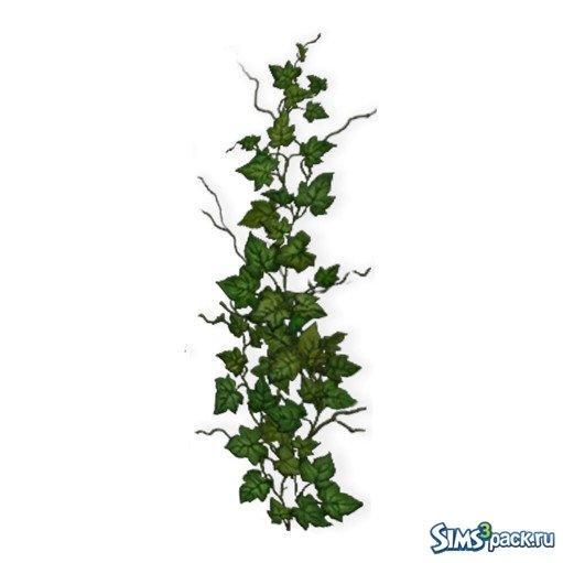 Растение Плющ для Sims 3