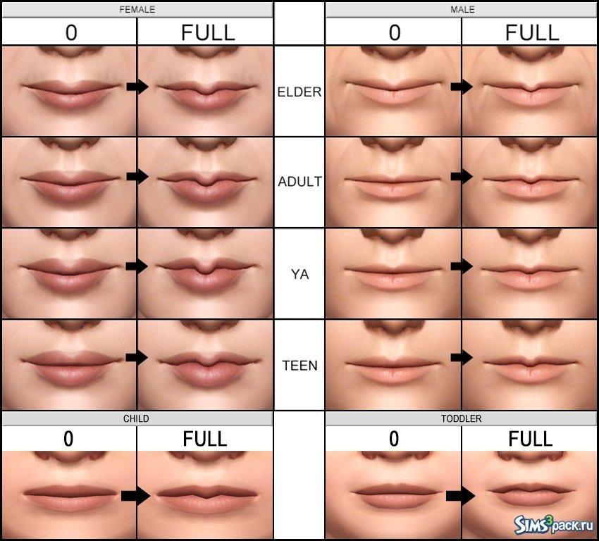 Размер губ рта и половых губ у женщин