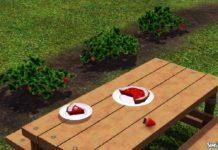 Новое растение - клубника от douglasveiga для Симс 3