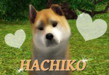 Хатико от DetkaGeymer для Sims 3
