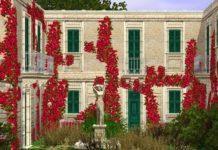 Цветы для украшения дома от Murano для Симс 3