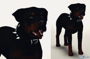 Ротвейлер Рокки от Heartbeat для Sims 3