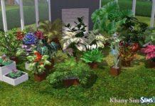 Цветы от Souris для Симс 3