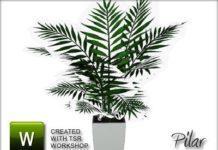 Растение Love planta от Pilar для Sims 3