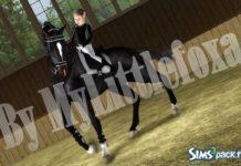 Набор поз Horse Training от MyLittlefoxa для Sims 3