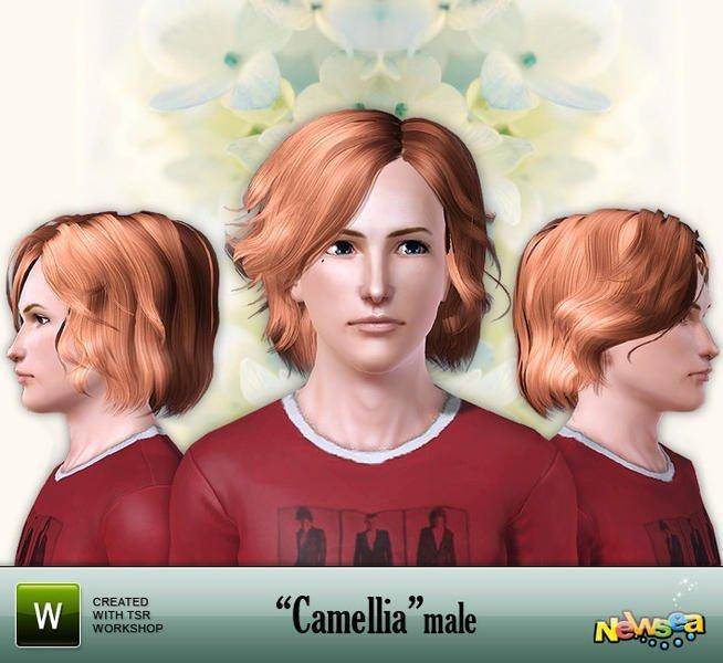 """Мужская прическа """"Камелия"""" от Newsea для Симс 3"""