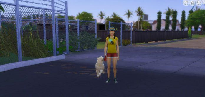 Мод «Выгул собак» от LittleMsSam для Sims 4
