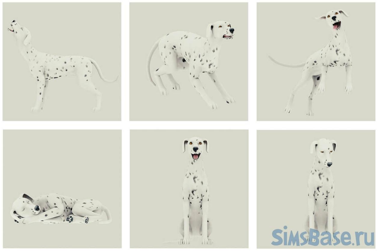 Набор поз «Эмоции собак» от simmerberlin для Sims 4