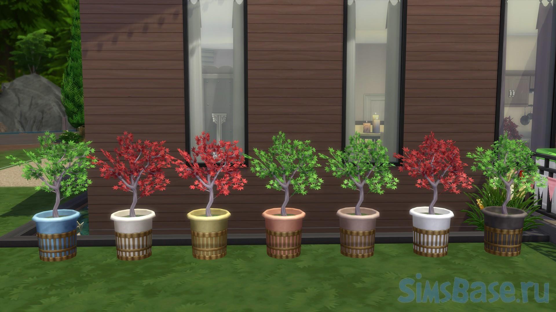 Садовые растения Эми от Teknikah для Sims 4