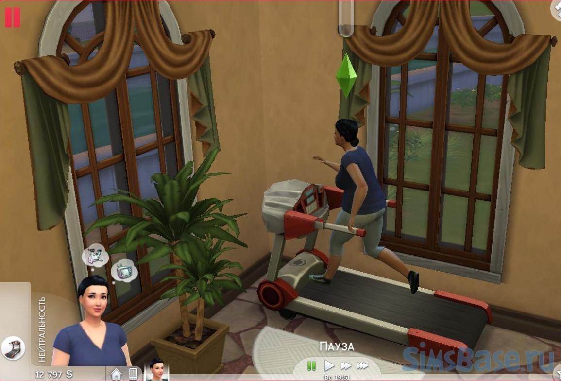 Вопросы и ответы по геймплею Sims 4