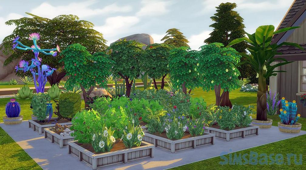 Какие растения в Sims 4 самые дорогостоящие